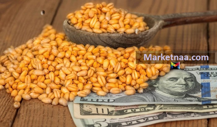 رئيس لجنة الأسعار بالغرفة التجارية| يوضح كيف أثر تراجع الدولار مُقابل الجنيه على أسعار الغذاء بمصر