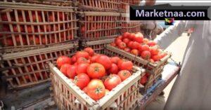 أسعار الخضروات والفاكهة في مصر اليوم الجمعة 4 أكتوبر 2019| بعد خفض أسعار الوقود